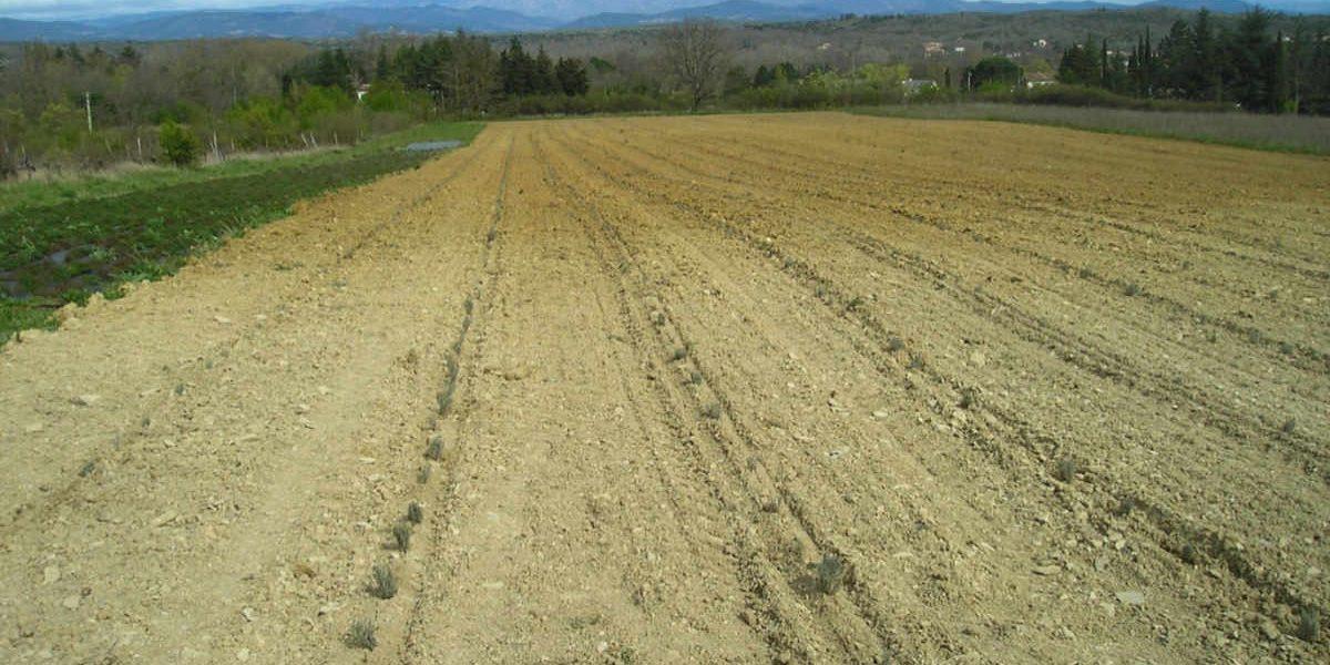 savoir faire agriculture biologique