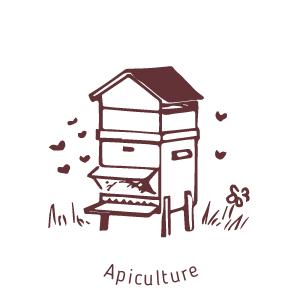 Apiculture-au moulin de mon père-biodiversité et équilibre écologique